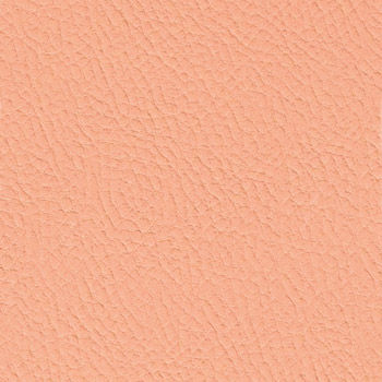 Rosa salmone